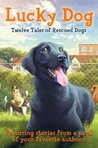 Lucky Dog by Elizabeth Cody Kimmel