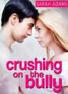 Crushing on the Bully (Crushing on You, #2)