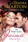 Jaimie: Fire & Ice (The Wilde Sisters #2)