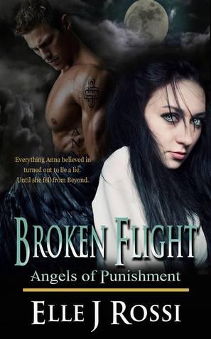 Broken Flight (Angels of Punishment, #1)