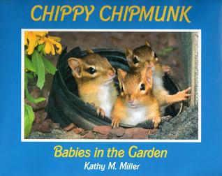 chippy-chipmunk-babies-in-the-garden