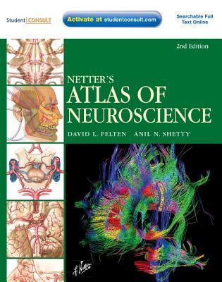 Netters Atlas Of Human Neuroscience By David L Felten