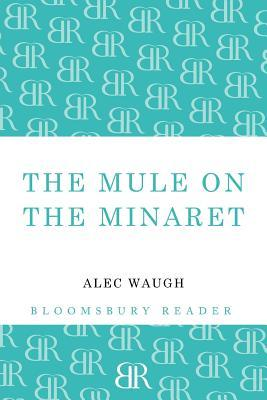 The Mule on the Minaret: A Novel about the Middle East
