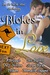 Blokes in Love (An Oz MM Meet Anthology) by A.B. Gayle