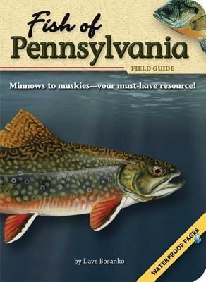 Fish of Pennsylvania Field Guide