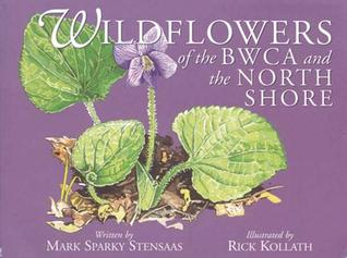 Wildflowers of Bwca and the North Shore