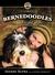 Bernedoodles by Sherry Rupke