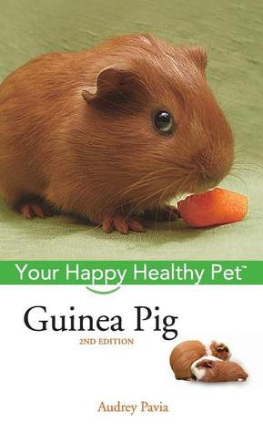 Guinea Pig by Audrey Pavia