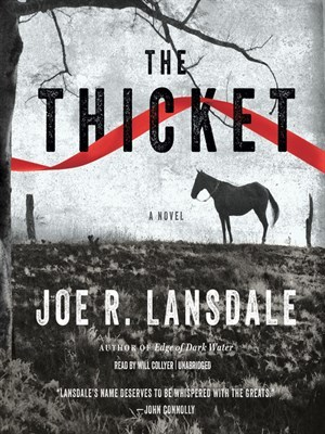 Image result for The Thicket (novel)