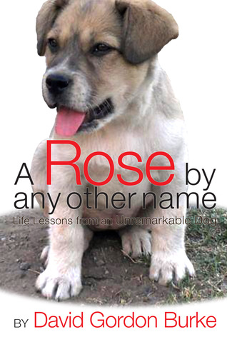 A Rose by Any Other Name - Life Lessons from an Unremarkable Dog