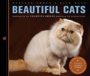 beautiful-cats
