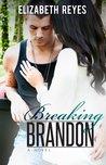 Breaking Brandon