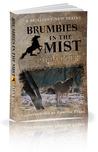 Brumbies in the Mist