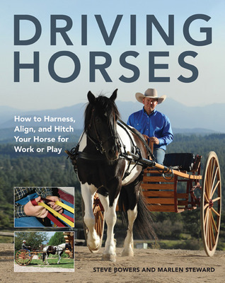 Driving Horses How To Harness Align And Hitch Your Horse For Work Or Play