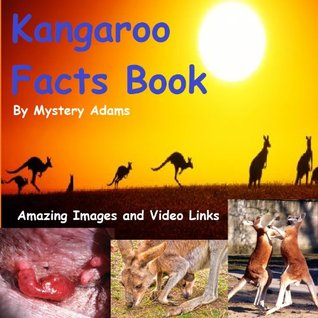 Kangaroos Facts Book for Kids - Amazing Fun Facts About Kangaroos
