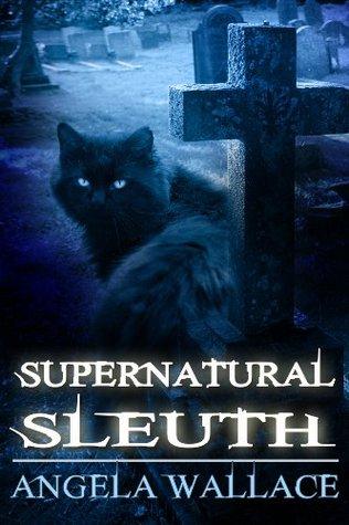 Supernatural Sleuth, Case File 1(Supernatural Sleuth)