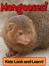 Mongooses! Learn About Mongooses and Enjoy Colorful Pictures - Look and Learn! (50+ Photos of Mongooses)