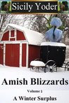 Winter Surplus (Amish Blizzards #1)