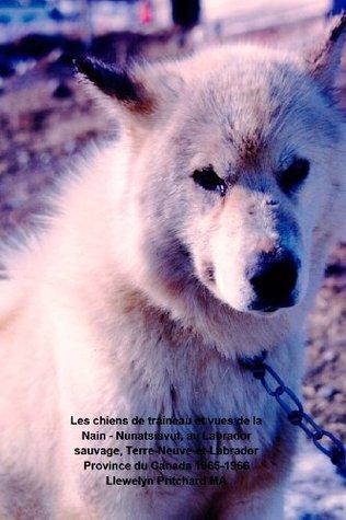 Les Chiens de Traineau Et Vues de La Nain - Nunatsiavut, Au Labrador Sauvage, Terre-Neuve-Et-Labrador Province Du Canada 1965-1966: Photo Albums par Llewelyn Pritchard