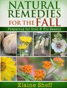 Natural Remedies for the Fall: Preparing for Cold & Flu Season