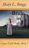 Bride in the Storm (Chance Creek Brides #3)