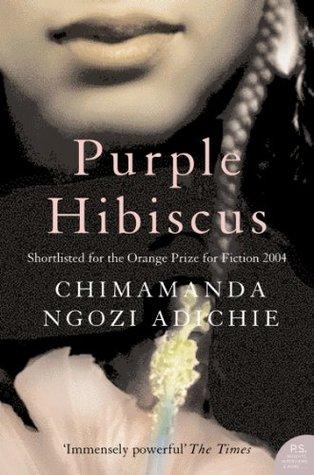 purple hibiscus synopsis