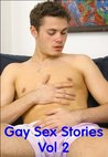 Gay Sex Stories Vol 2 - Erotic Fiction for Gay Men (Erotic Gay Fiction)