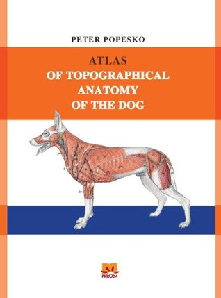 Atlas Of Topographical Anatomy Of The Dog By Peter Popesko