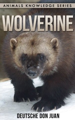 Wolverine: Beautiful Pictures & Interesting Facts (Animals Knowledge Series)