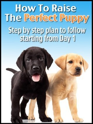 How to Raise the Perfect Puppy