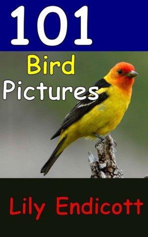 101 Bird Pictures Descargar libros gratis