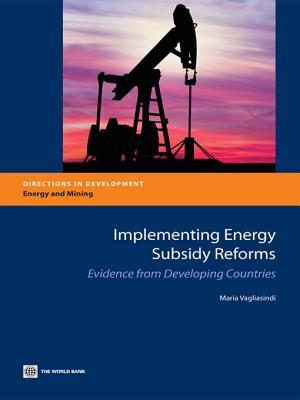 Implementing Energy Subsidy Reforms: Evidence from Developing Countries