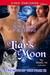 A Liar's Moon by Joy Lynn Fielding