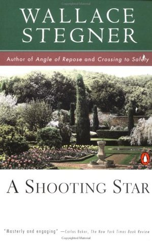 A Shooting Star Book Cover
