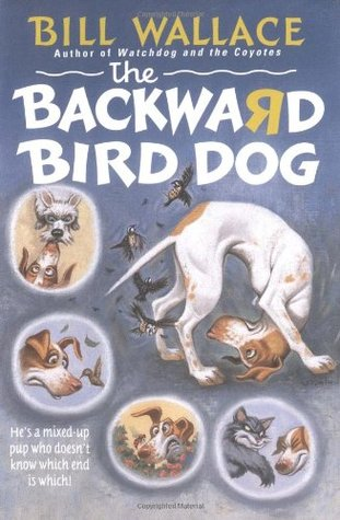 the-backward-bird-dog