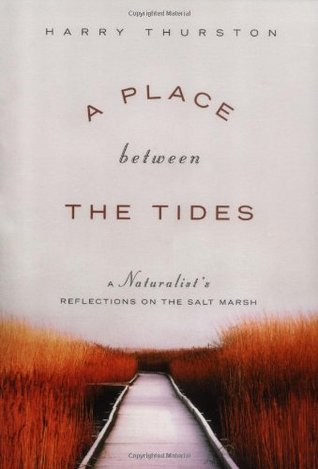 A Place between the Tides