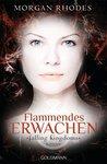 Flammendes Erwachen by Morgan Rhodes