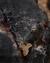 The Torn Apart: Genesis