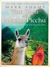 Turn Right at Machu Picchu by Mark    Adams