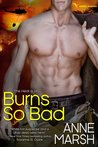 Burns So Bad (When SEALs Come Home #1)