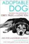 Adoptable Dog: Te...