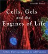 Cells, Gels and the Engines of Life: A New Unifying Approach to Cell Function