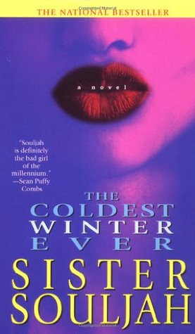 the coldest winter ever book free