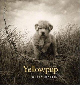 Yellowpup