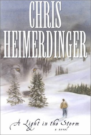A Light in the Storm by Chris Heimerdinger