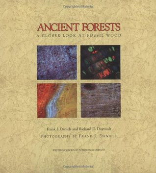 ancient-forests-a-closer-look-at-fossil-wood