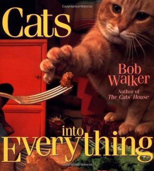 cats-into-everything