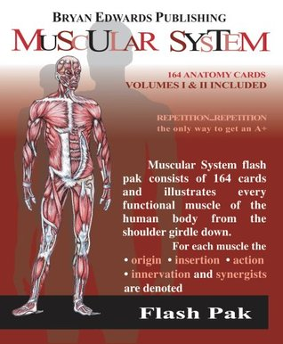 The Muscular System (Flash Paks/Volumes 1 and 2) by Flash Anatomy