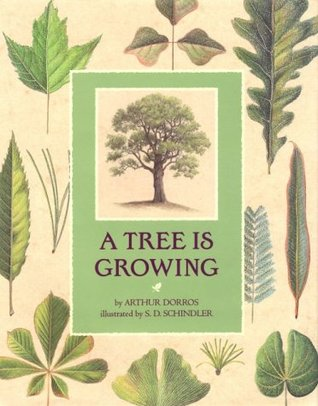 A Tree is Growing by Arthur Dorros