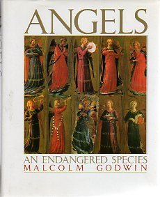 Angels by Malcolm Godwin